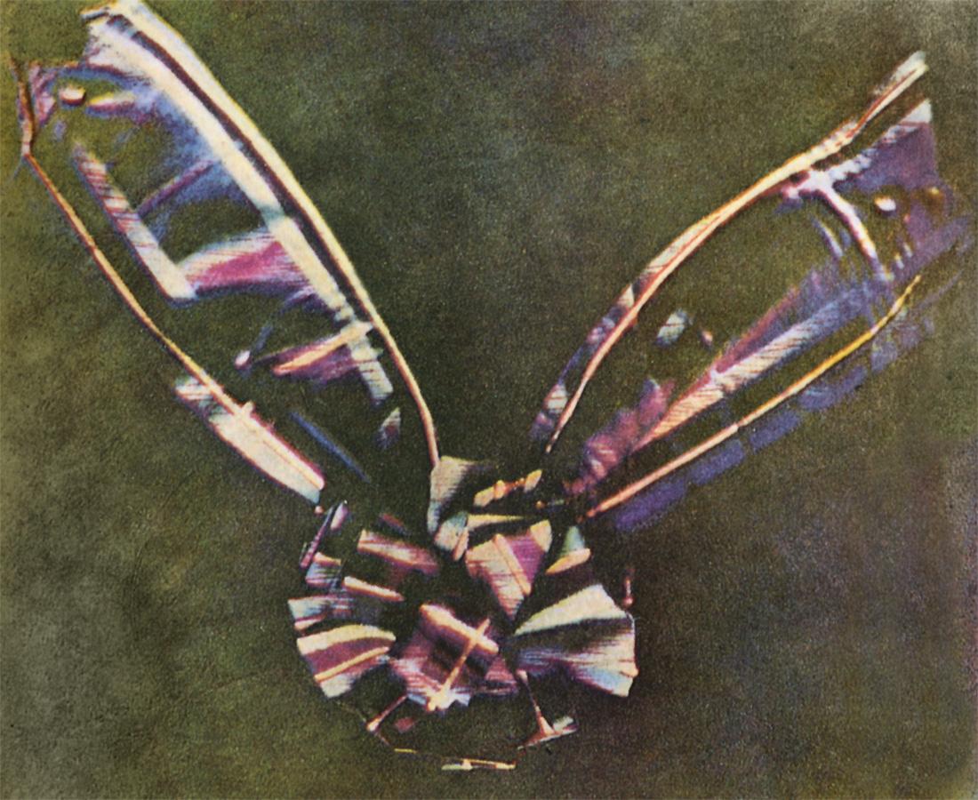 La primera fotografía en color